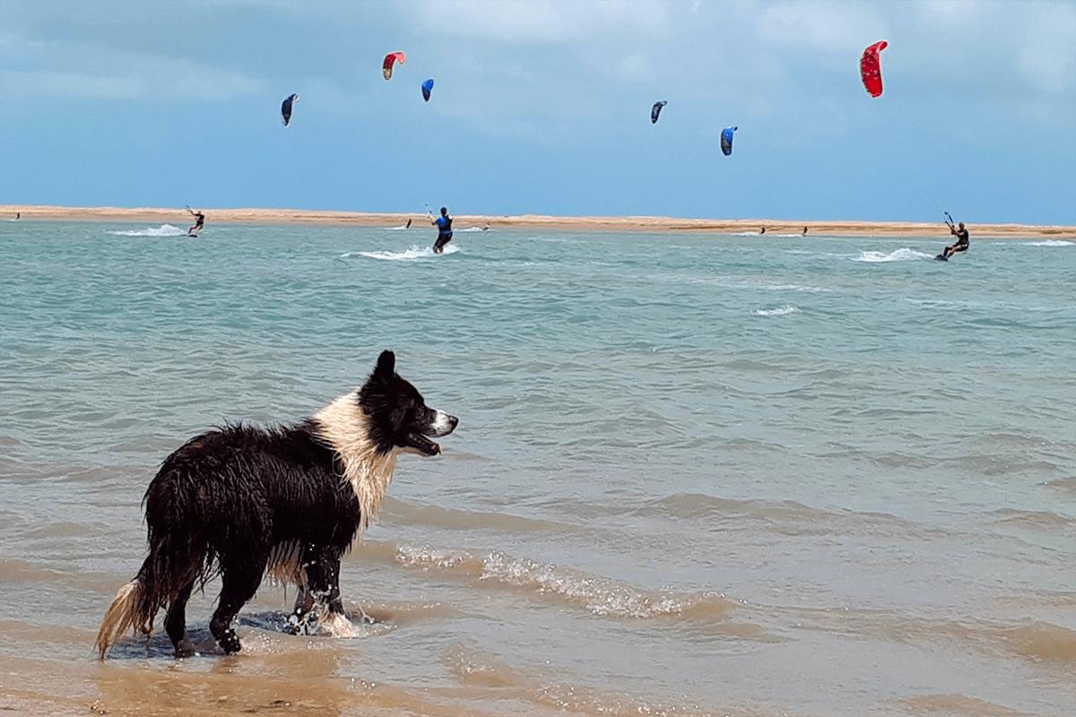 Ilha do Guajiru – Praia da Barra