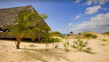 Kizingoni, Lamu Island